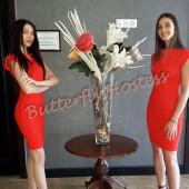 hostess sighisoara (1)